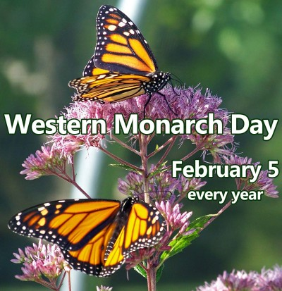 Image result for western monarch day images