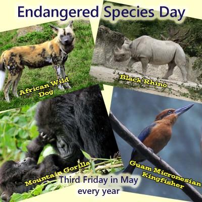 endangered species report